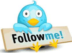 Belajar Twitter : Memahami Jenis-jenis Follower