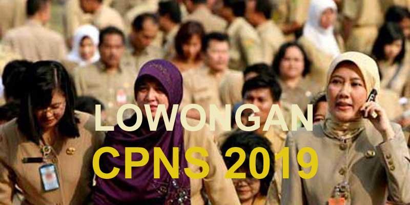 Syarat CPNS 2019